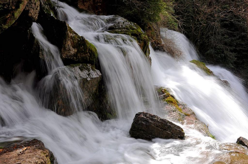 Life Thirst - Spring Runoff